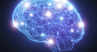 مشروع تربوي وفق بيداغوجيا التعلم الدماغي