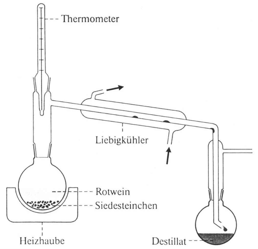 Wein Destillieren