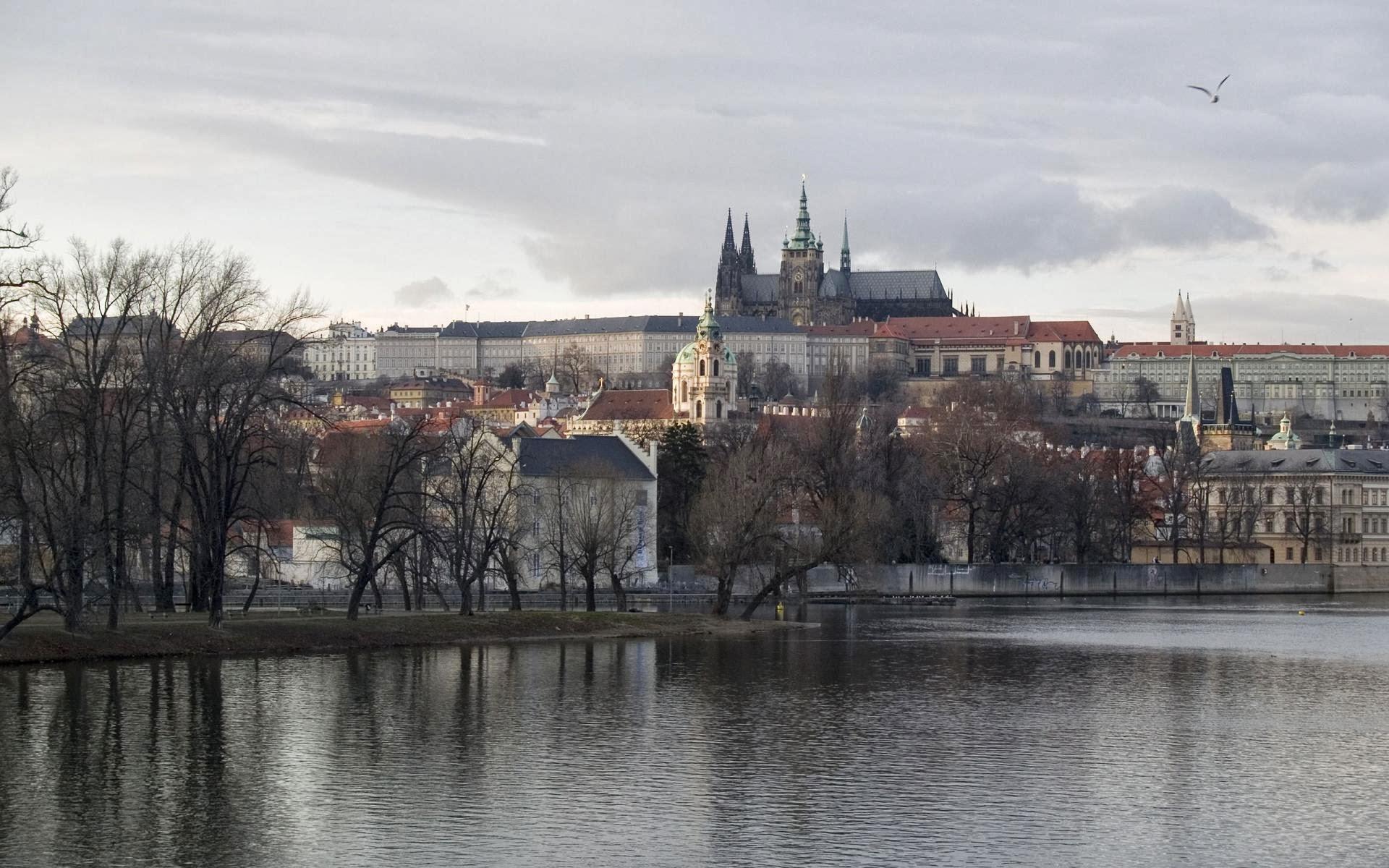 Czech glory hole porn