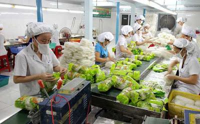 Tuyển 12 lao động chế biến nông sản tại Aichi, Nhật Bản