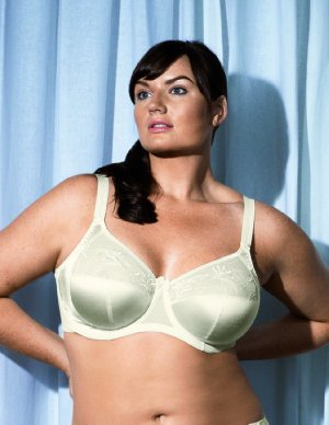 Celebrity Bra Sizes, Models, Stars, Actresses Cup Size ...