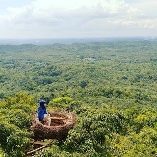 Objek wisata Bukit Palawan, Kandangan