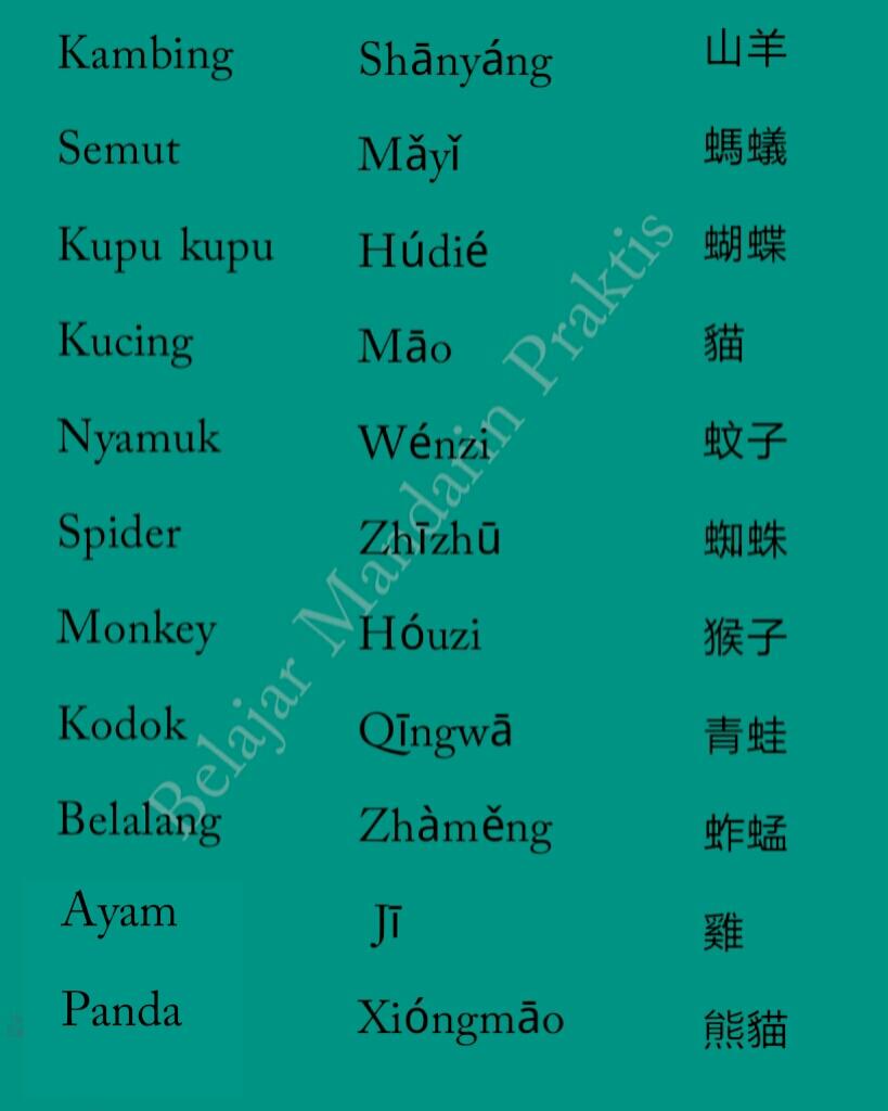 Terima Kasih Bahasa Mandarin : terima, kasih, bahasa, mandarin, Hewan, Dalam, Bahasa, Mandarin, BELAJAR, MANDARIN