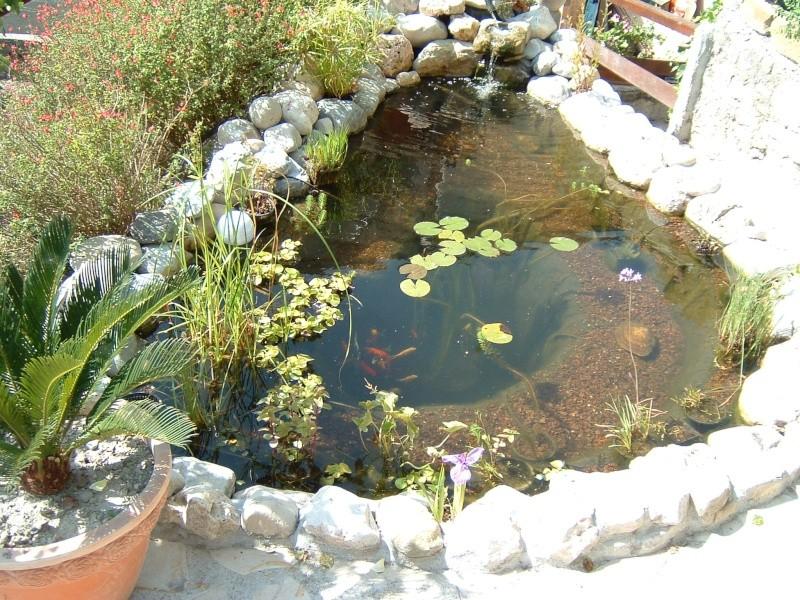 bassin de jardin reglementation