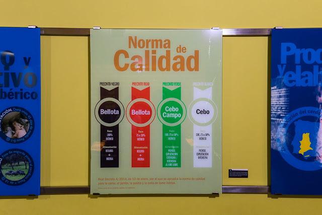 Clasificación del jamón en el Museo del jamón de Aracena