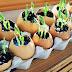 ΤΕΛΕΙΟ: 6 άγνωστες χρήσεις για τα… τσόφλια των αβγών!