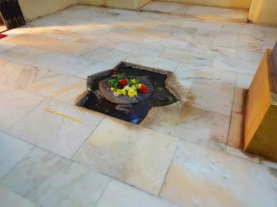 Tortoise Image at Baneshwar Mandir Pune