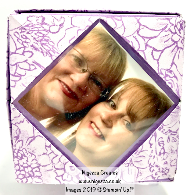 Photo Cube Using Botanical Butterflies, Stampin' Up! Nigezza Creates
