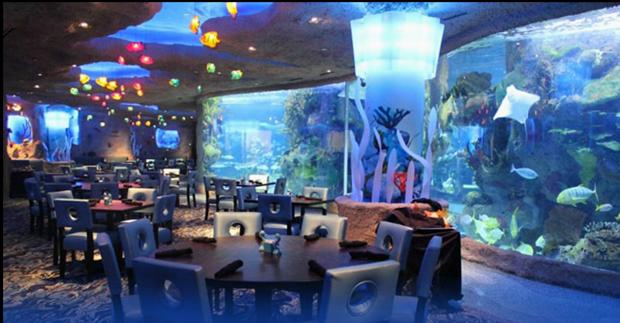 The Majestic Underwaters Underwater Restaurants