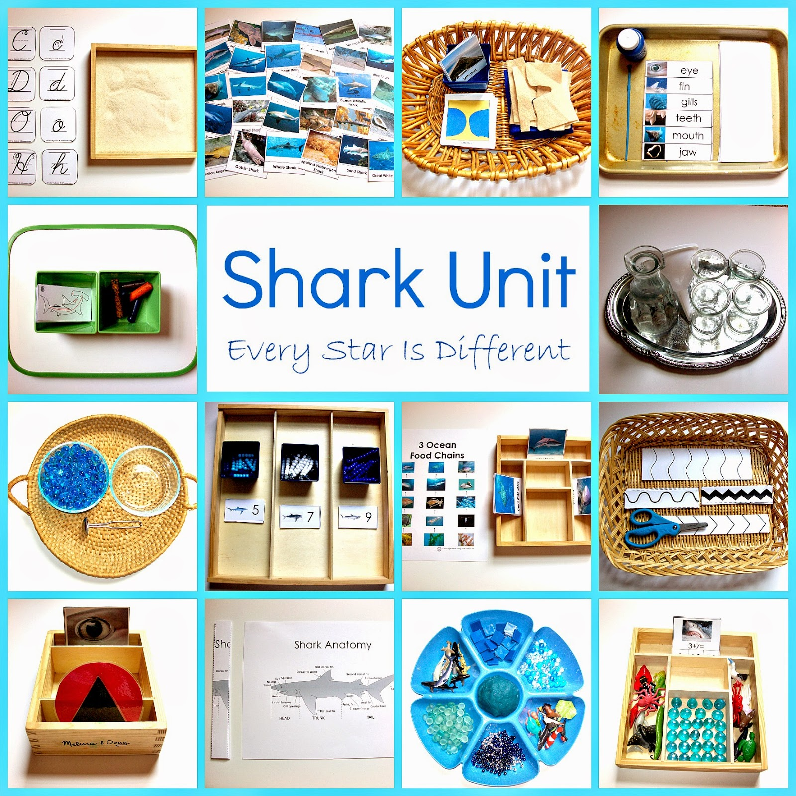 Shark Activities For Tots And Preschoolers With Free