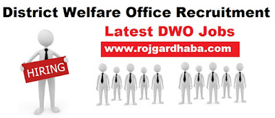 dwo-district-welfare-office-jobs