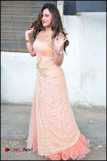 Telugu Actress Farah Khan  Pictures at Pochampally IKAT Art Mela 2016  0107.jpg