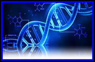 pareri Zynteglo medicament pe baza de celule si gene