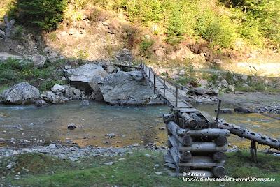 cu mocanita pe Valea Vaserului