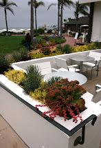 Ciao Newport Beach Gardens Of Hotel Del Coronado