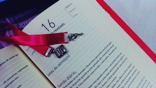Diário de uma cumplice - Mila Wander, pensamentos valem ouro, blog, resenha, livros, leituras, literatura