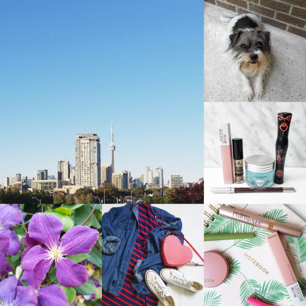 bbloggers, bbloggerca, bblogger, canadian beauty blogger, lifestyle, instagram, instamonth, round up, toronto, drugstore beauty, birthday gifts, flowers, ootd, plus size blogger, loccitane, essence cosmetics, urban decay, maybelline, superstay, matte ink, loreal, lash paradise, elf, sephora canada, le fair skin, facial serum, harry potter, hufflepuff, taylor swift, bite beauty