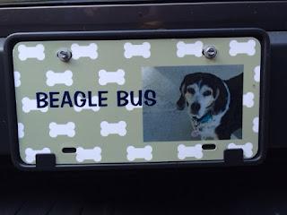 Beagle Bus