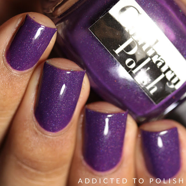 Contrary Polish Purple Pepper