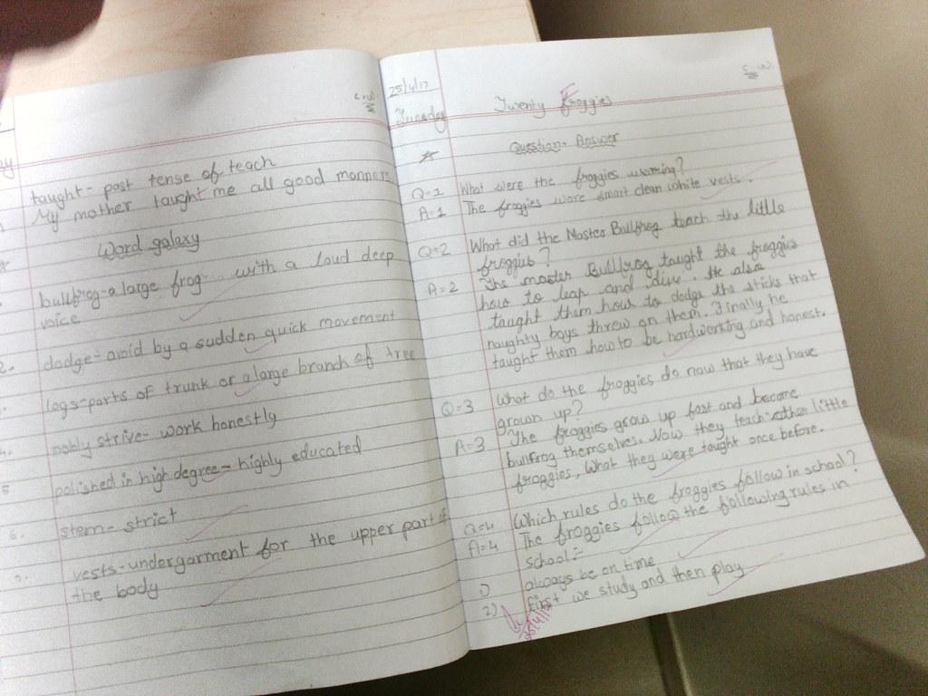 Pis Vadodara Std 4 English Twenty Froggies Notebook