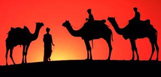 hukum-islam-tentang-memberi-nama-hewan-peliharaan