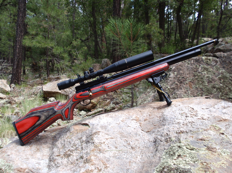 The Best Air Rifles and Pellet Guns For Survival