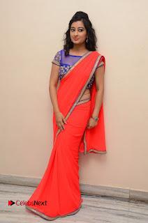 Actress Tejaswini Pictures in Saree at Pratikshanam Audio Launch  0109.JPG