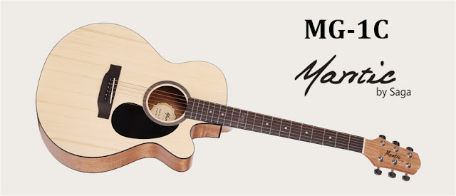 Đàn guitar acoustic dáng D