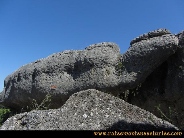Ciudad Encantada: Tortuga