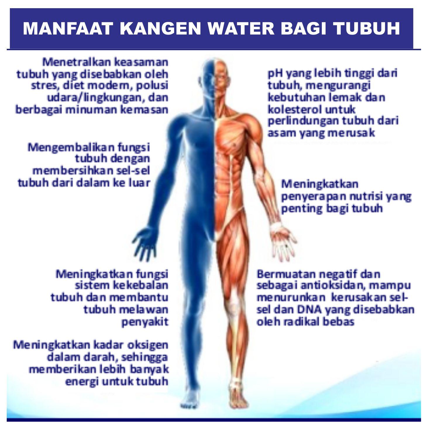 Agen Kangen Water Tangerang Selatan