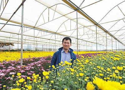 Chủ shop Hoa Yêu Thương Phạm Hoàng Thái Dương chụp hình ở nông trường hoa