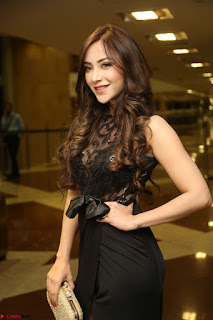 Angela Krislinzki in Transparent Black Gown at Rogue Movie Teaser Launch 1st March 2017 113.JPG