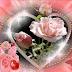 Mensagem de Aniversário Romântica para Namorada.(o)