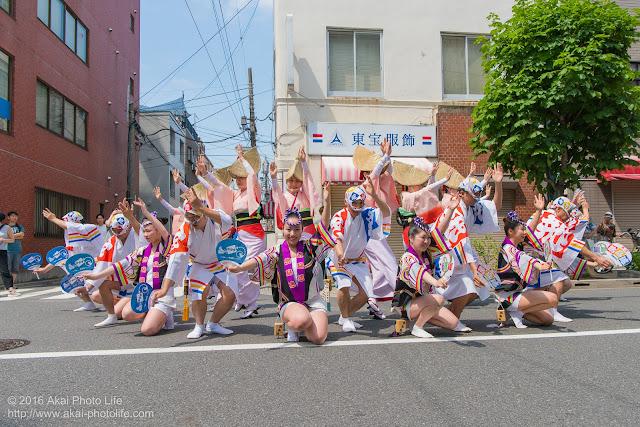 飛鳥連、マロニエ祭り、福井通りの演舞の写真 その3