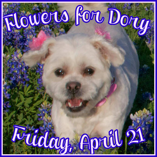 Flowers for Dory 4/21