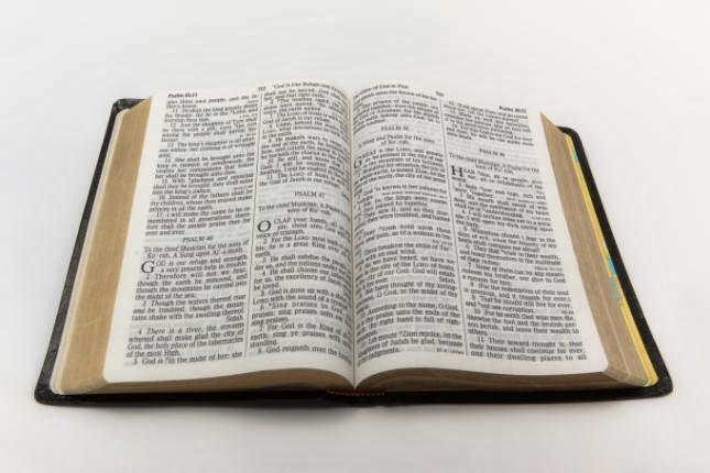 Biblia Reina Valera 1960 Negra, Tamaño Mediano, Concordanc y Zipper (Cierre) #13