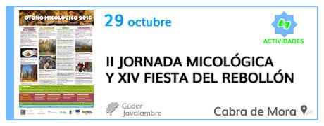 II Jornada Micológica y XIV Fiesta del Rebollón