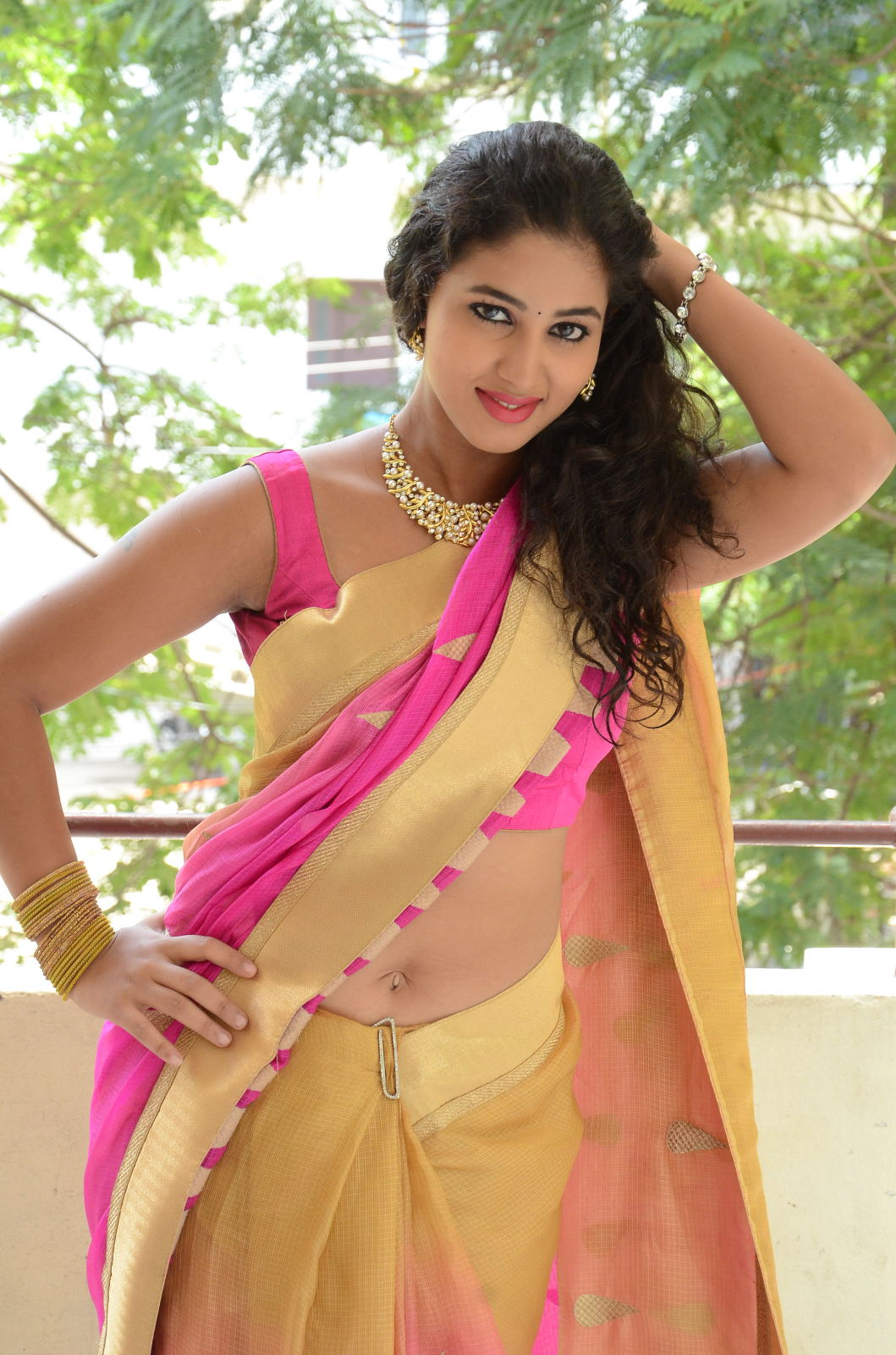 pavani new photos in saree-HQ-Photo-13
