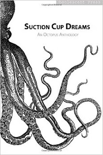 cover of Suction Cup Dreams