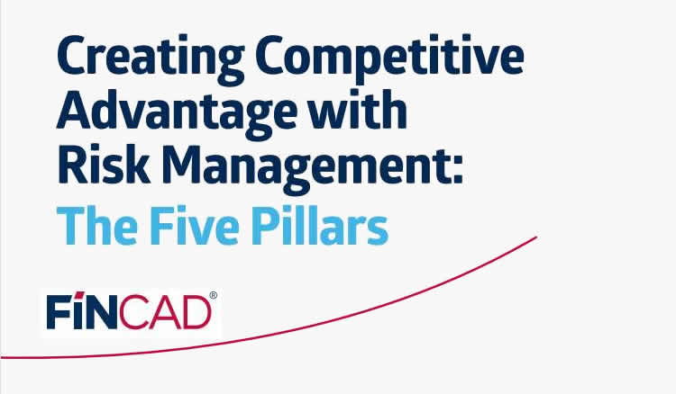 Creating Competitive Advantage with Risk Management - The 5 Pillars