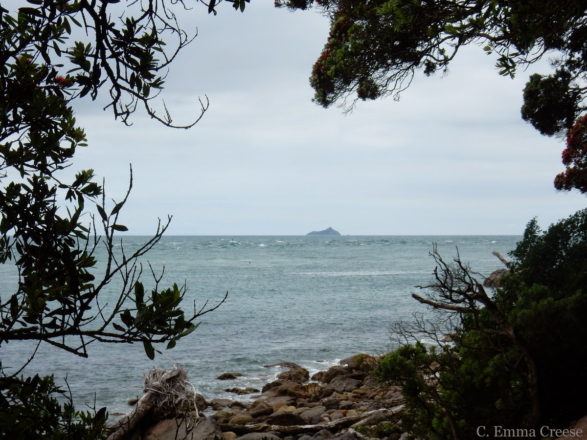 A Kiwi Christmas feat. Mount Maunganui and pies