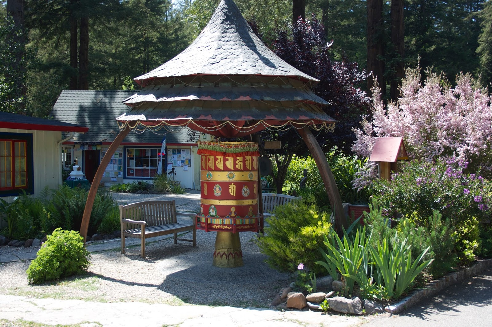buddhist single men in santa cruz Retreats the gay buddhist fellowship's 27th annual fall retreat will be held on the last  nestled among redwoods and streams in the santa cruz mountains near.