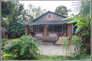 Dhuri Homestay, Vengurla