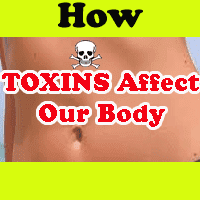 toxins impacts in our life