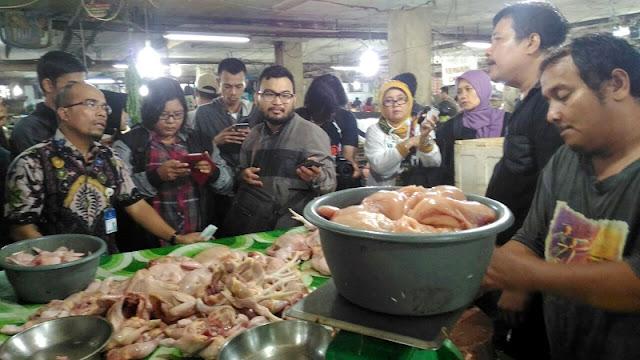 Harga Ayam Pedaging 2017 Melonjak Naik
