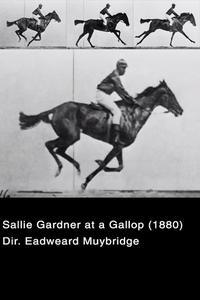 Watch Sallie Gardner at a Gallop Online Free in HD