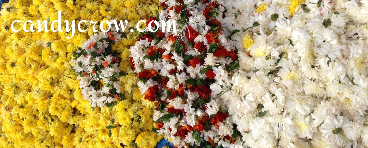 Flower Market | Hyderabad - Serilingampally market