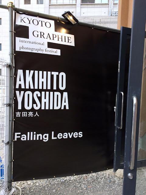 吉田亮人 Falling Leaves