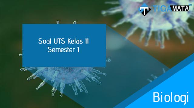 80 Soal dan Jawaban UTS Biologi Kelas 11 Semester 1
