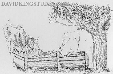 art sketch life horse wheeler farm trough tree
